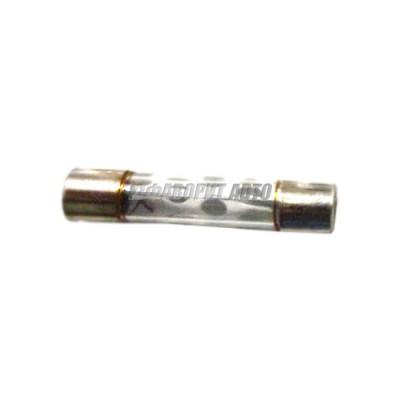Предохранитель стеклянный быстродействующий 20A 32/250V FGL3 20A [029-20]